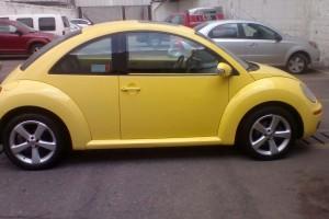 Beetle Sport